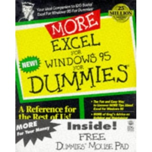 More Excel for Windows '95 for Dummies