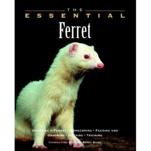 The Essential Ferret (Essential Guide)