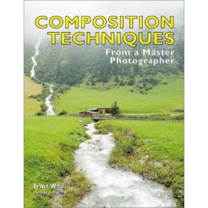 Composition Techniques: From a Master Photographer