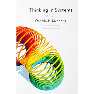 Thinking in Systems: International Bestseller