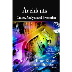 Accidents: Causes, Analysis and Prevention (Safety and Risk in Society)