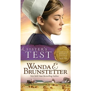 Sister's Test: 2 (Sisters of Holmes County)