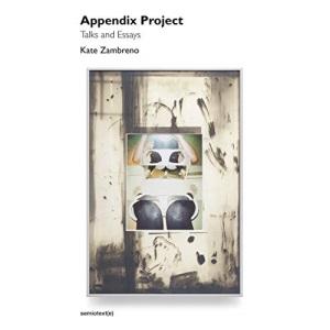 Appendix Project: Talks and Essays (Semiotext(e) / Native Agents)