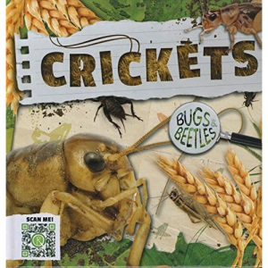 Crickets (Bugs and Beetles)