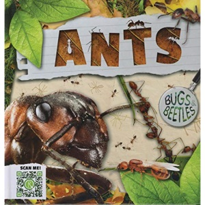 Ants (Bugs and Beetles)