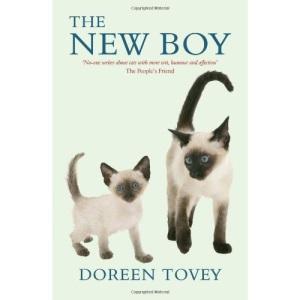 The New Boy (Doreen Tovey)