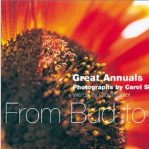 From Bud to Seed: Ten Great Annuals