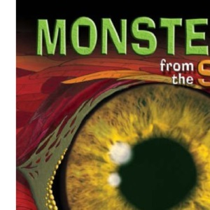 KS2 Monsters from the Sky Reading Book: superb for catching up at home