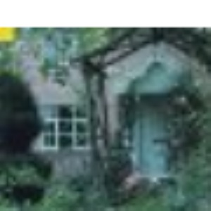 English Country Gardens (Country Series)
