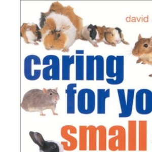 Caring for Your Small Pets: An Owner's Guide to Looking after Rabbits, Guinea Pigs, Hamsters, Gerbils and Jirds, Rats, Mice and Chinchillas