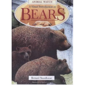 A Visual Introduction to Bears (Animal Watch)