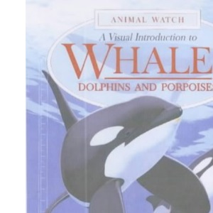 A Visual Introduction to Whales (Animal Watch)