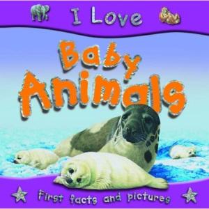 Baby Animals (I Love)