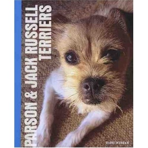 Parson and Jack Russell Terriers
