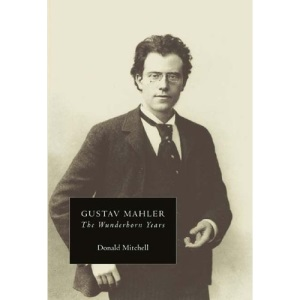 Gustav Mahler: The Wunderhorn Years: Chronicles and Commentaries: Wunderhorn Years - Chronicles and Commentaries Vol 2