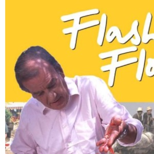 Flash Floyd: Timeless Favourites From Around the World