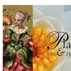Plants & Symbols (Book of...)