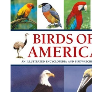 Birds of America: An Illustrated Encyclopedia and Birdwatching Guide