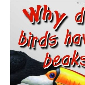 1st Questions and Answers Birds: Why Do Birds Have Beaks? (First Questions and Answers)