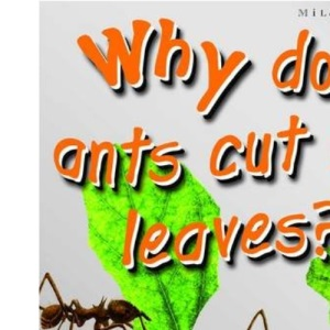 1st Questions and Answers Bugs: Why Do Ants Cut Up Leaves? (First Questions and Answers)