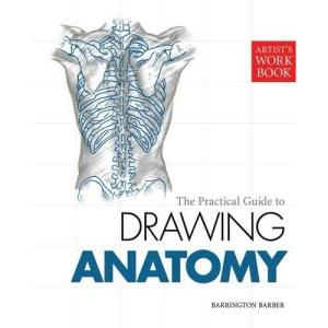 Artist's Workbook: Anatomy