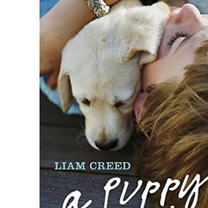 A Puppy Called Aero: How a Labrador Saved a Boy with ADHD