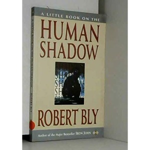 A Little Book on the Human Shadow (Little Books)