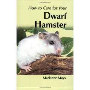How To Care For Your Dwarf Hamster (Your first...series)