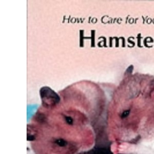 How to Care for Your Hamster (Your First...series)