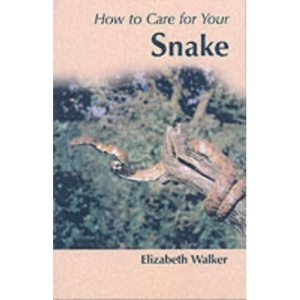 How to Care for Your Snake (Your first)