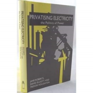 Privatizing Electricity: The Politics of Power