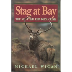 Stag at Bay