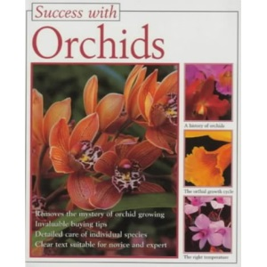 Orchids (Success with)