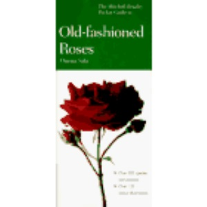 Pocket Guide to Old-fashioned Roses (Mitchell Beazley Pocket Guides)