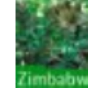 Zimbabwe and Botswana: The Rough Guide (Rough Guide Travel Guides)