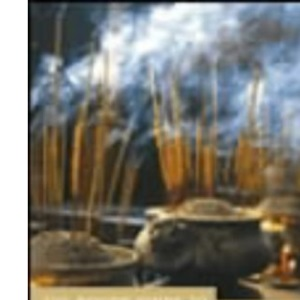 Vietnam: The Rough Guide (Rough Guide to Vietnam)