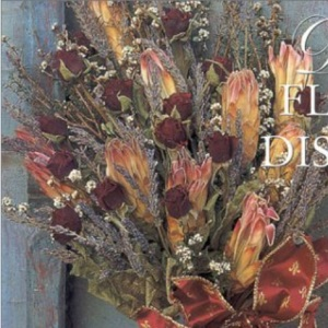 Dried Flower Displays: Glorious Creations with Everlasting Flowers (Crafts)