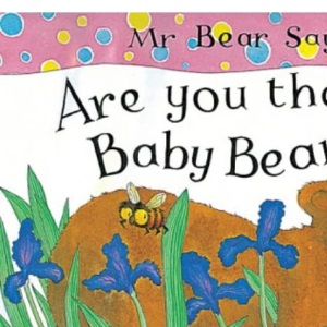 Mr. Bear Says are You There, Baby Bear?