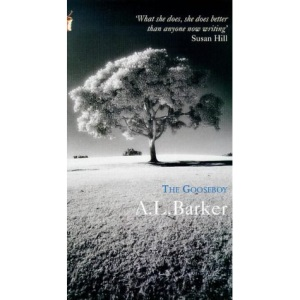 The Gooseboy (Virago modern classics)