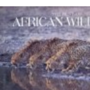 Best of African Wildlife (Photography)