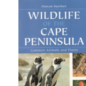 Wildlife of the Cape Peninsula: Common Animals and Plants