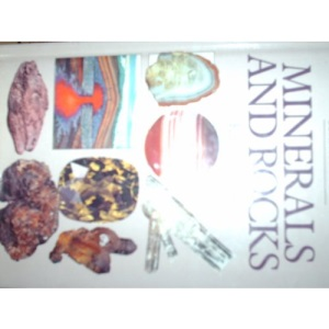 Minerals and Rocks (Compact Guides S.)