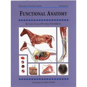 Functional Anatomy (Threshold Picture Guide)