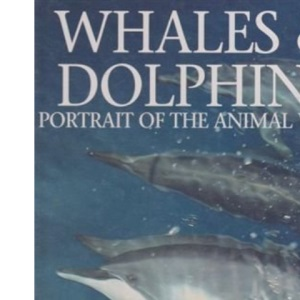 Whales and Dolphins (Animal Portraits)