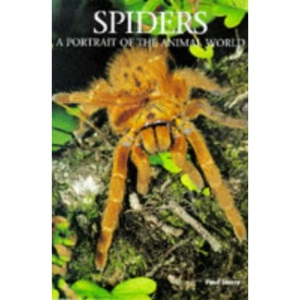 Spiders (A Portrait of the Animal World)