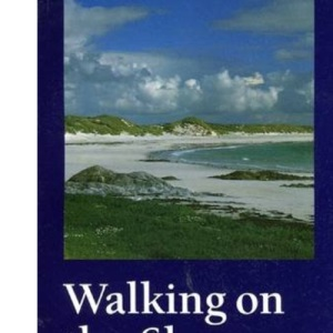 Walking on the Shore: A Way of Sharing Faith in Groups