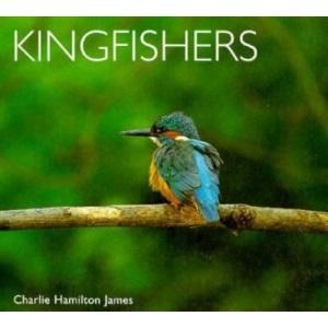 Kingfishers (Worldlife Library)