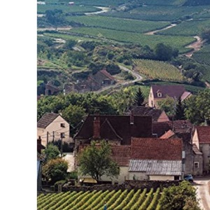 The Companion Guide to Burgundy (Companion Guides)