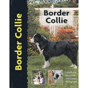 Border Collie (Dog Breed Book)