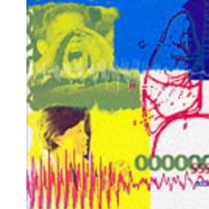 The Little Big Voice: Voice Coaching for Ordinary People